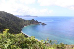 ウミガメがいるビーチが目の前!加計呂麻島のゲストハウス「カムディ」で大自然を満喫しよう